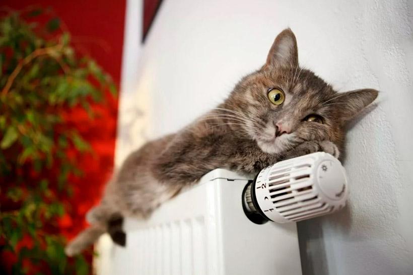 Коммунальщики приступили к отключению отопления в Москве