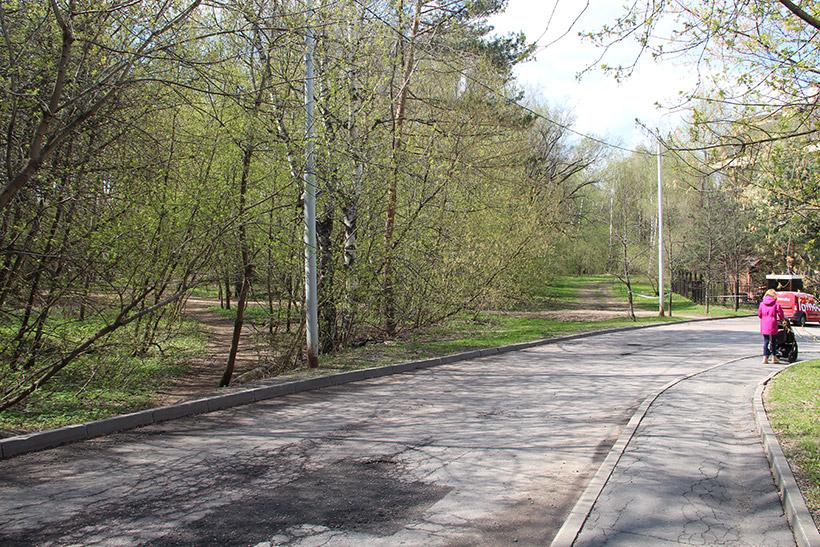 Вход в Крылатский лес рядом с ЖК «Долина грез»
