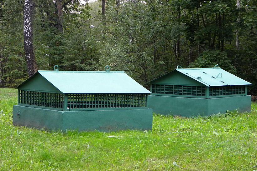 Вентиляционные шахты на окраине леса в Крылатском