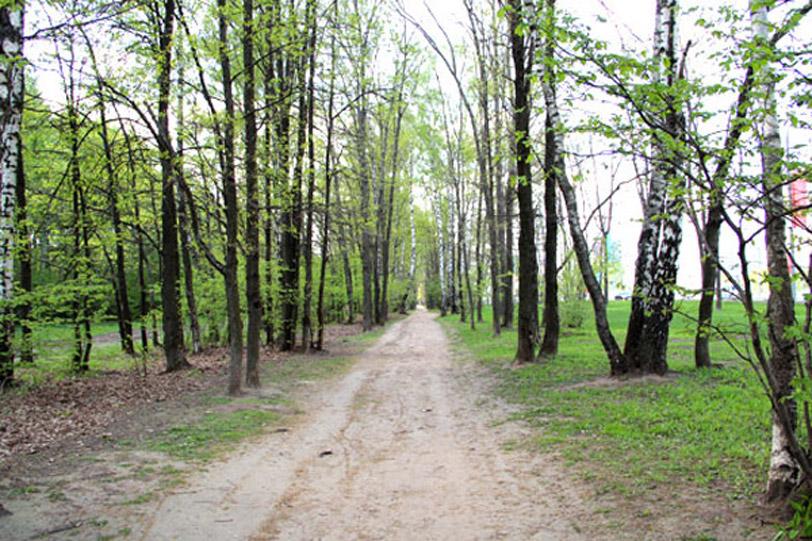 Тропинка вдоль Рублёвского шоссе в сторону района Кунцево